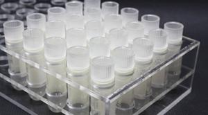 イオン化ミネラル幹細胞培養上清液