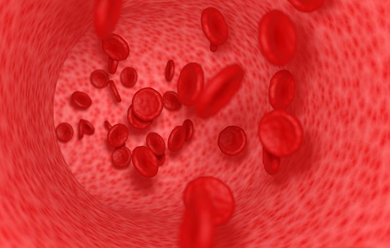 一酸化窒素 血管